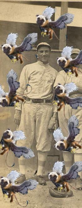 Pug Griffin
