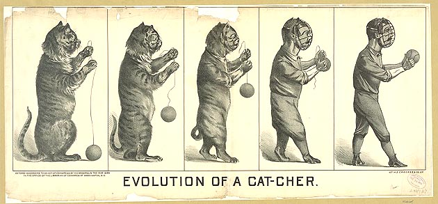 catcherevolution